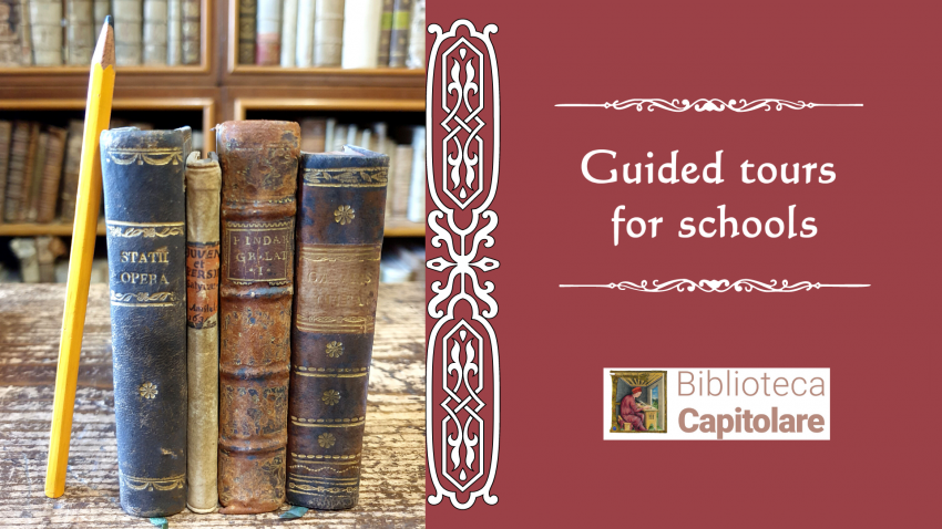 Guided tours for schools